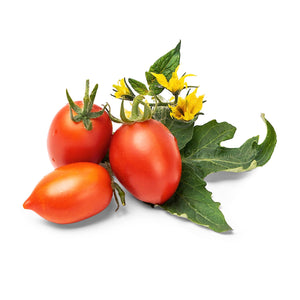 Red Cherry Tomato Lingot®