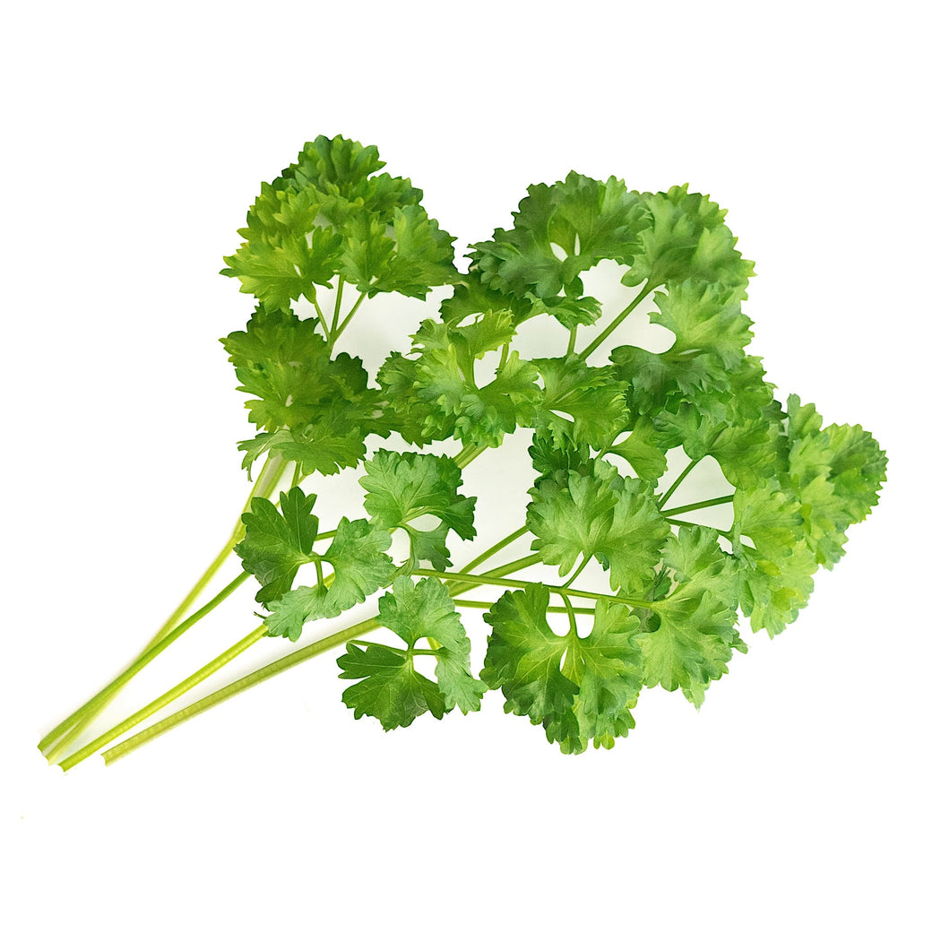 Curly Parsley Lingot®