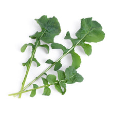 Load image into Gallery viewer, Arugula Lingot®