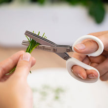 Load image into Gallery viewer, Véritable® 3 Blade Small Scissors with Comb