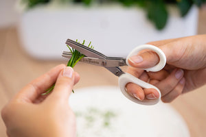 Véritable® 3 Blade Small Scissors with Comb