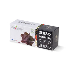 Load image into Gallery viewer, Shiso Purple Lingot®