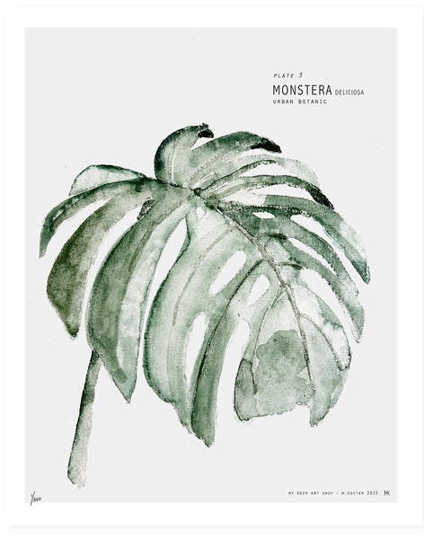 BOTANIC URBAN // MONSTERA PRINT 40 X 50