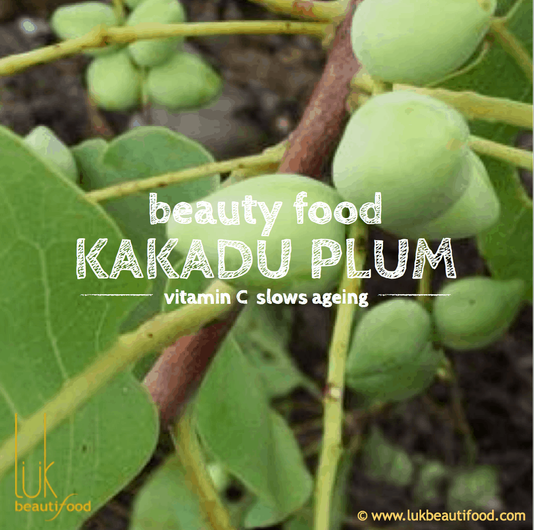 Beauty benefits of kakadu plum Beauty food glossary luk beautifood