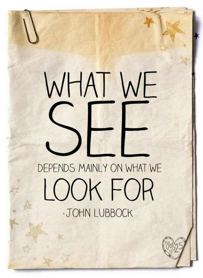 What we see quote