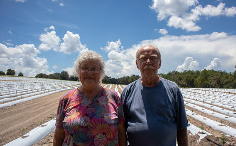 Marion and Denny Witt in their hemp field
