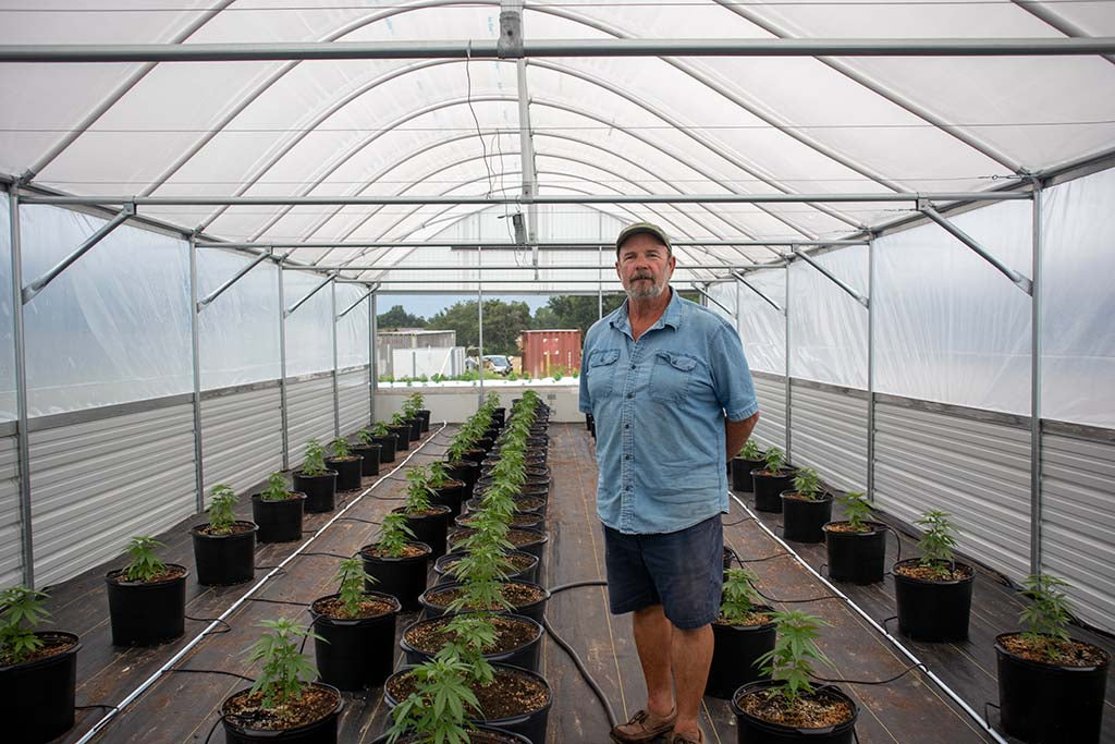 James A. Glass in his greenhouse with freshly planted hemp