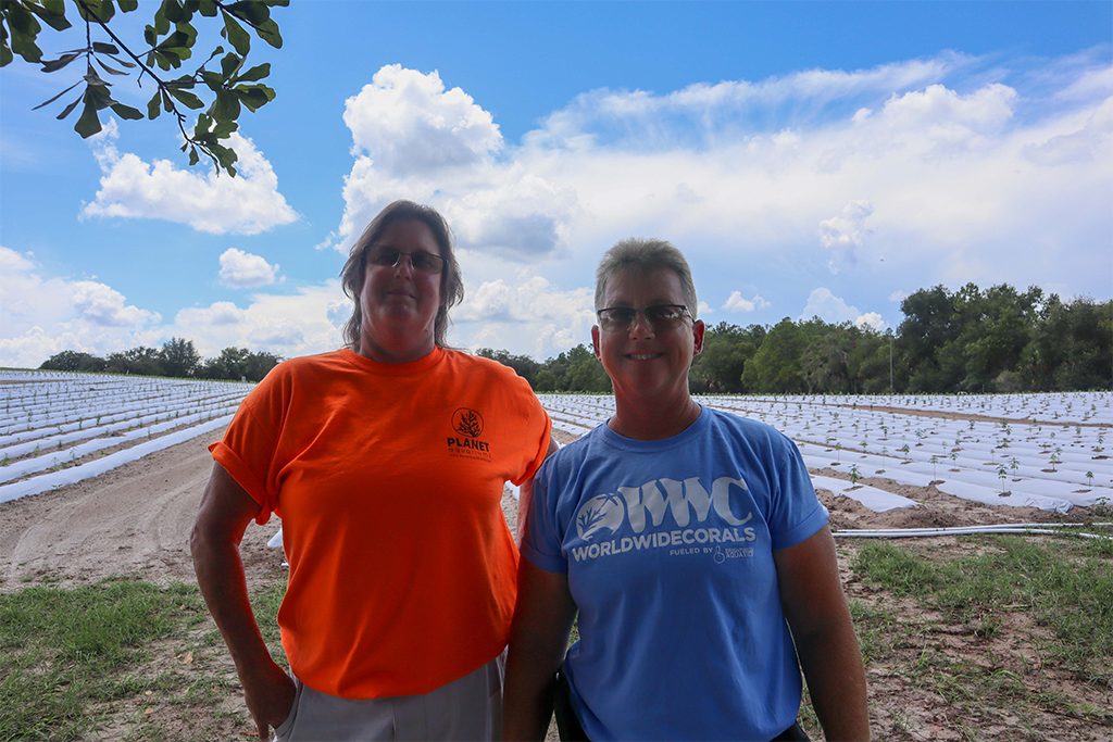 Linda Topping and Lavonna Witt in their hemp field