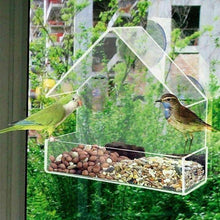 Nuwon™ Transparent bird feeder