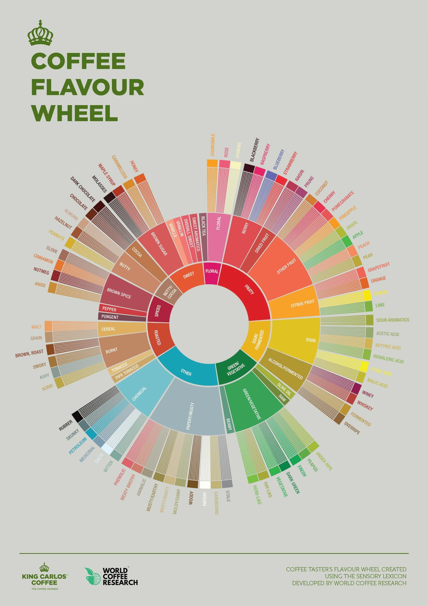 coffee flavour tasting wheel