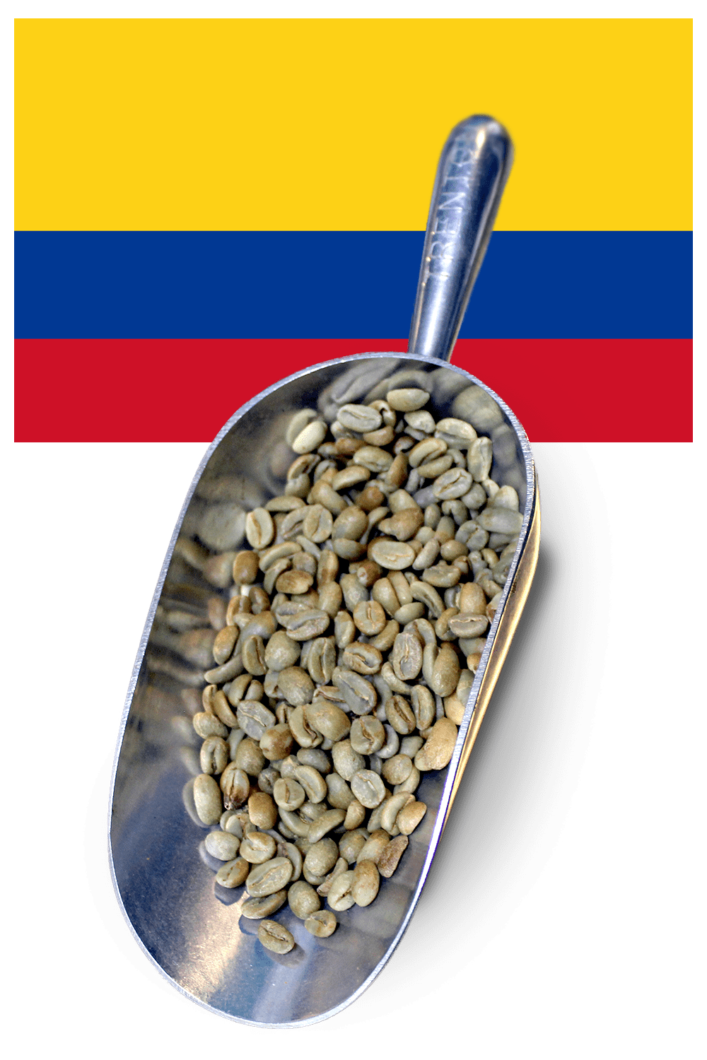 buy green beans colombia