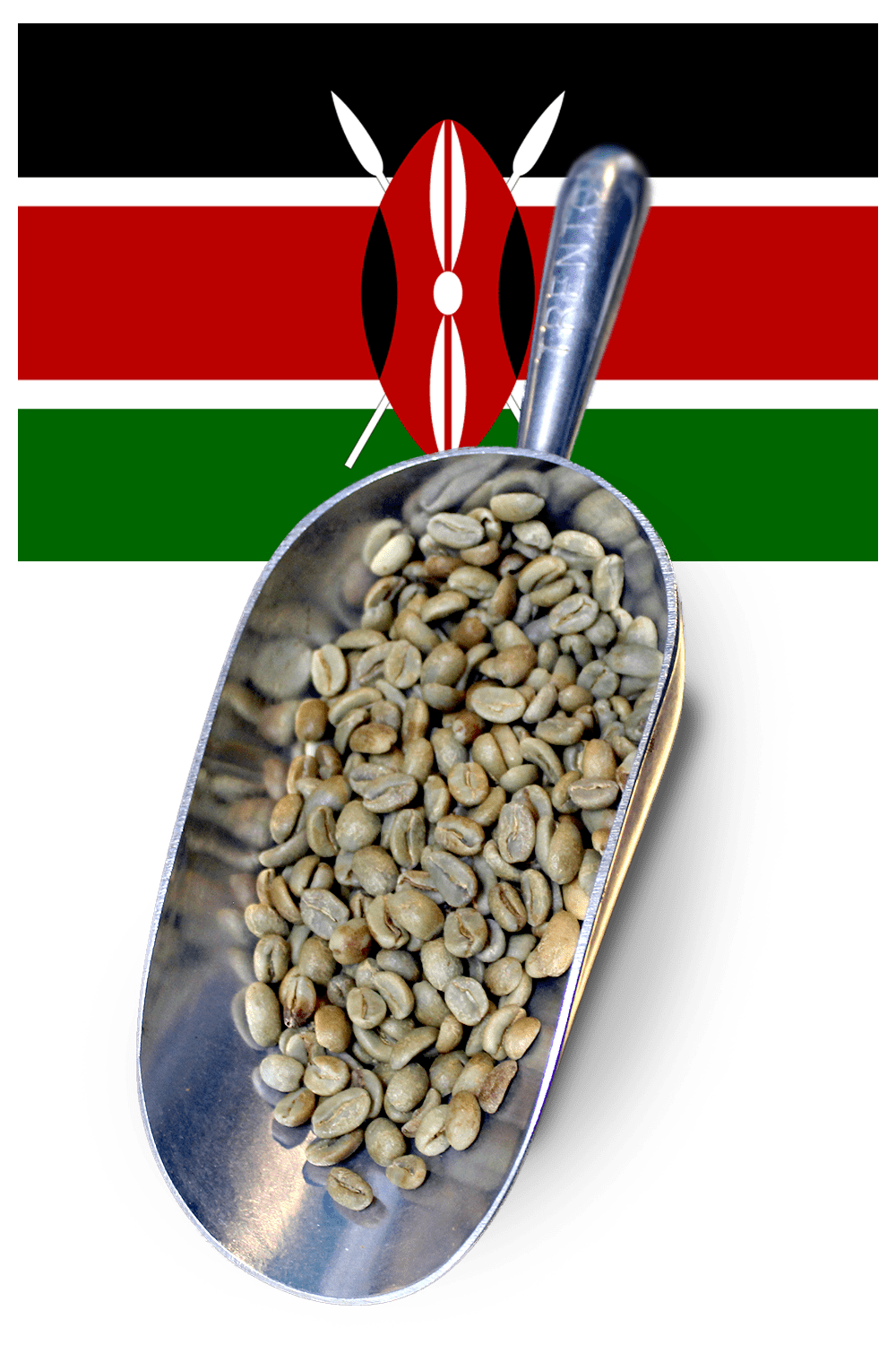 buy green beans kenya