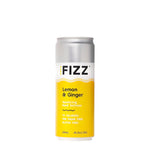 Hard FIZZ | Hard Seltzer | Lemon & Ginger