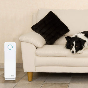 "Germ Guardian Air Purifier True HEPA Filter for Allergies, Pets, Pollen, Smoke, Dust, Germ Guardian UVC Sanitizer Eliminates Germs, Mold, Odors, Quiet for Home, Office, Bedroom 22"" 3-in-1 AC4300WPT"