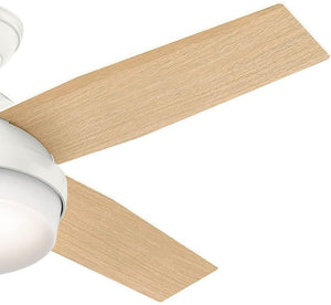 "Hunter Fan Company 59246 Hunter 44"" Dempsey Fresh White Ceiling Fan with Light and Remote"