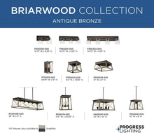 Load image into Gallery viewer, Progress Lighting P400048-020 Briarwood Island/Linear, 9.00x10.00x38.00, Bronze