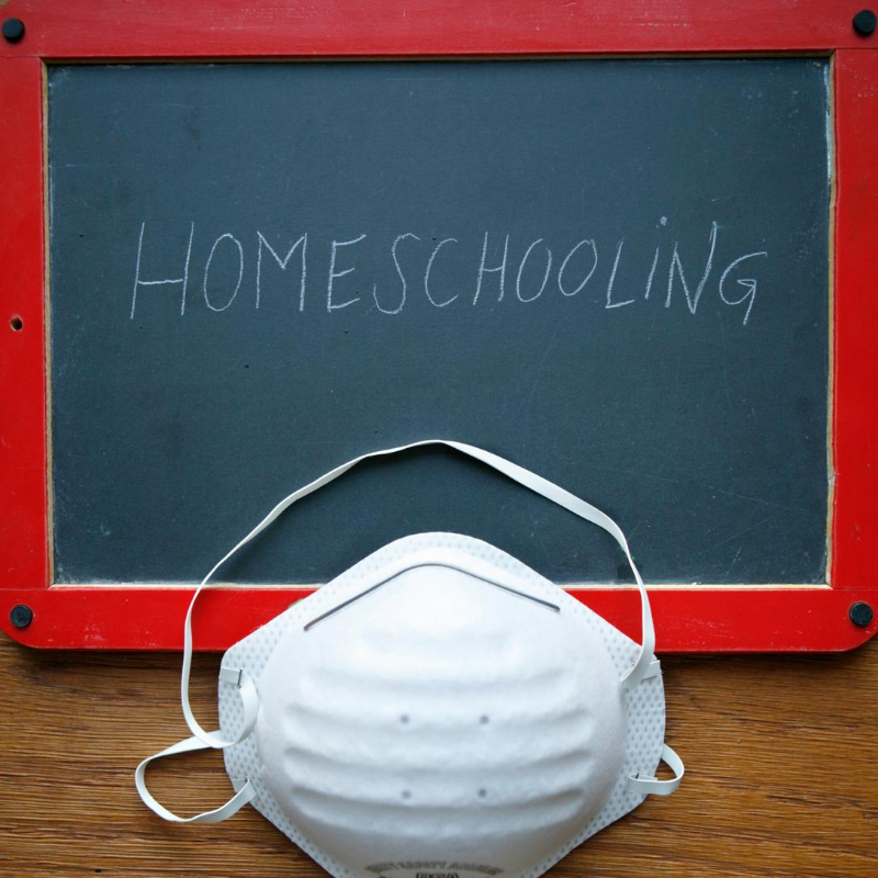 Can Tutoring Meet the Challenge of Homeschool Students and Distance Learners?