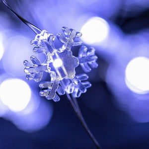 snowflakes seed light string