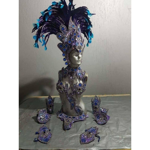 Dark Lilac and Blue Luxury Bikini Samba Costume