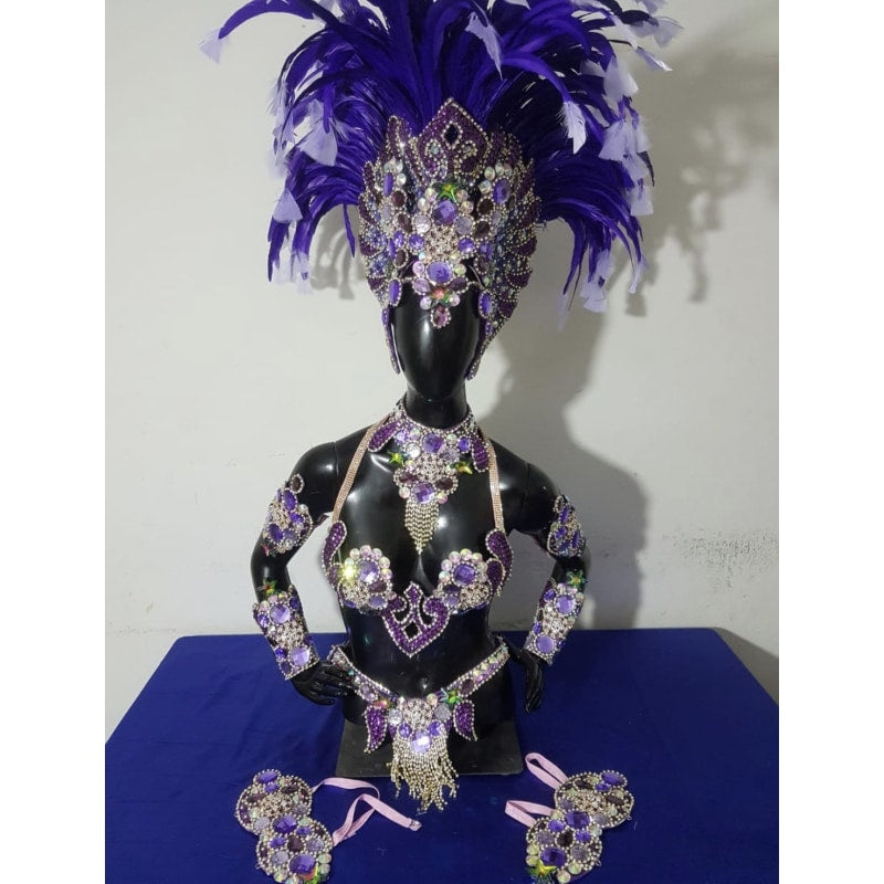 Purple Queen Luxury Bikini Samba Costume - BrazilCarnivalShop