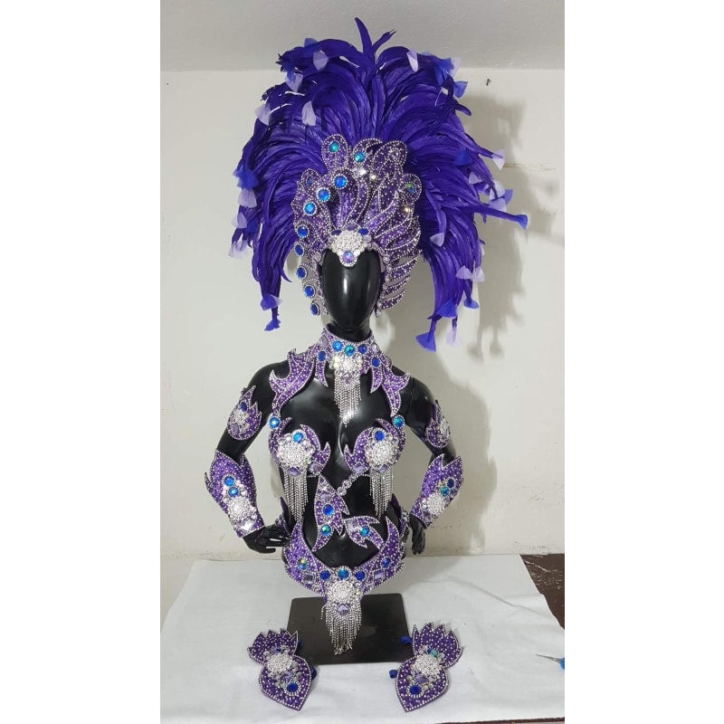 Dark Lilac and Blue Luxury Bikini Samba Costume - BrazilCarnivalShop