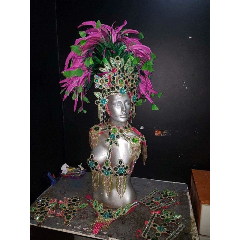 Pink and Green Luxury Bikini Samba Costume