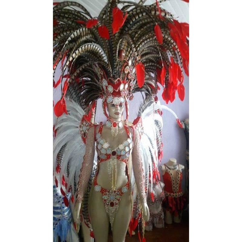 Ruby Red Trikini Rainha Luxury Bikini Samba Costume - BrazilCarnivalShop