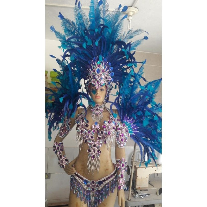 Blue Delight Samba Complete 10 Piece Costume