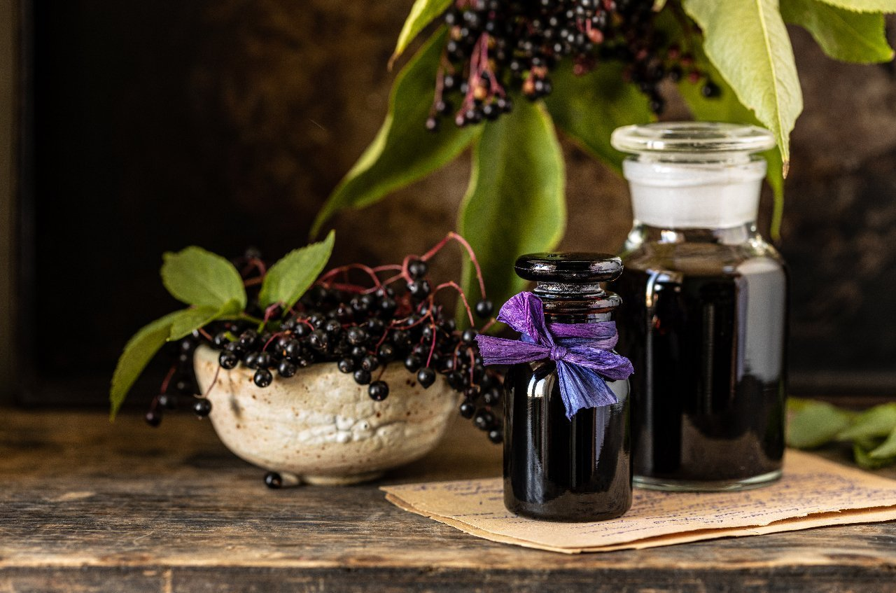 Elderberries consumption Do's and Don'ts