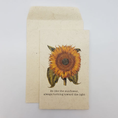 GC - Sunflowers always Turn to the Light