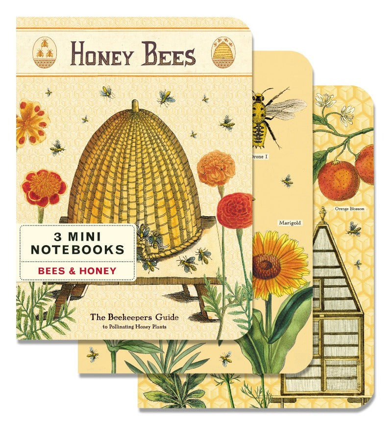 Cavallini 3 Mini Notebooks - Bees & Honey
