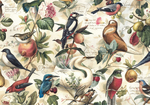 Gift Wrap - Birds & Fruit