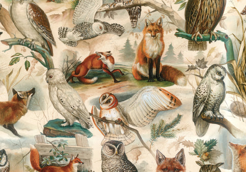 Gift Wrap - Fox & Owl