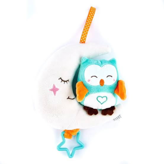 Teeny Wonders Musical Owl & Moon Baby Toy