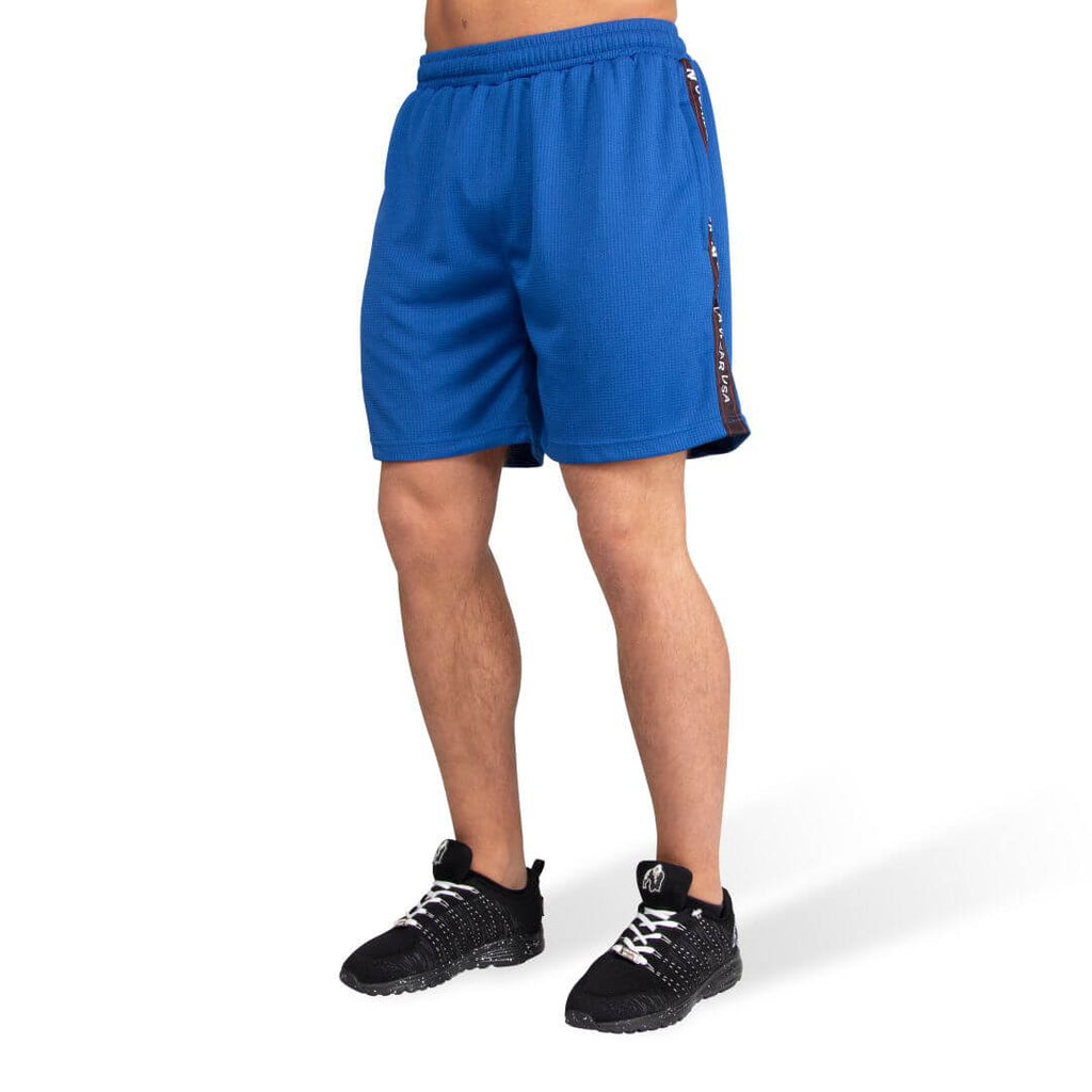 Reydon Mesh Shorts Blue