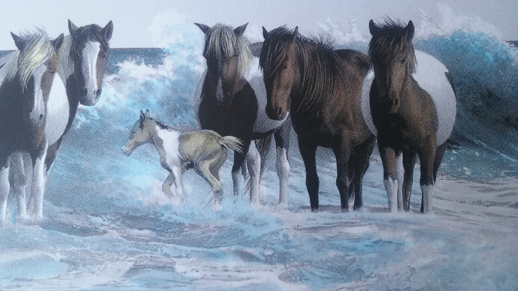 Wild Assateague Ponies on the Beach