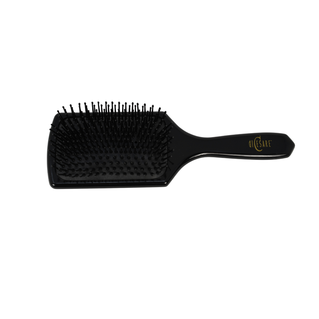 Michael DiCesare – Large Paddle Brush