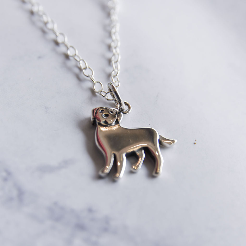 Sterling silver lab necklace.