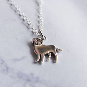 Close up of sterling silver lab necklace.