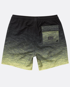 Tripper Stretch Lb Boardshorts