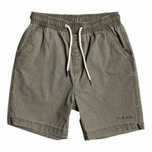 Load image into Gallery viewer, Taxer Walk Shorts