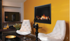 ZERO CLEARANCE DIRECT VENT GAS FIREPLACE