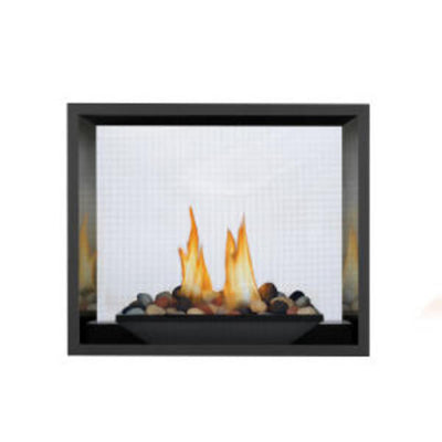 High Definition 81 Direct Vent Gas Fireplace