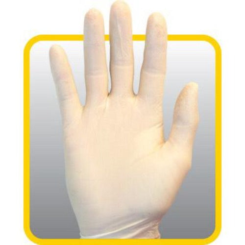 Disposable Latex Gloves, Powder Free 100 Gloves/Box