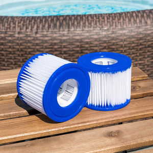 Bestway Type VI (Hot Tub) Filter Cartridges (Twin Pack)