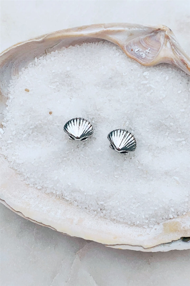 Clam Up Seashell Stud Earrings