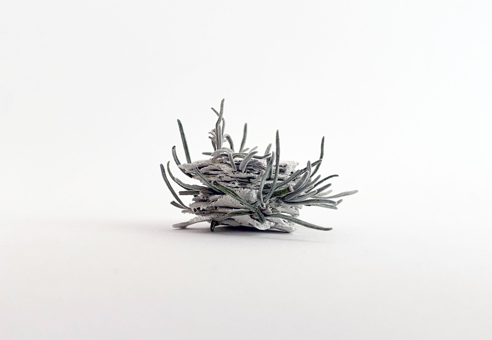 small clay sculpture with dried leaves