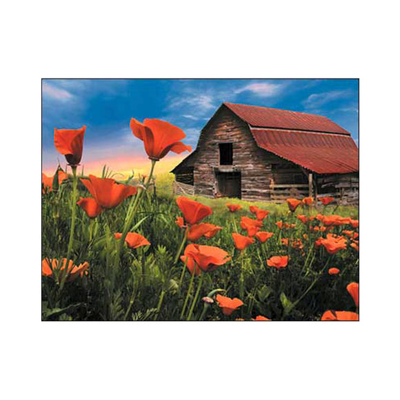 Barn with Poppies   Artist: Celebrate Life Gallery