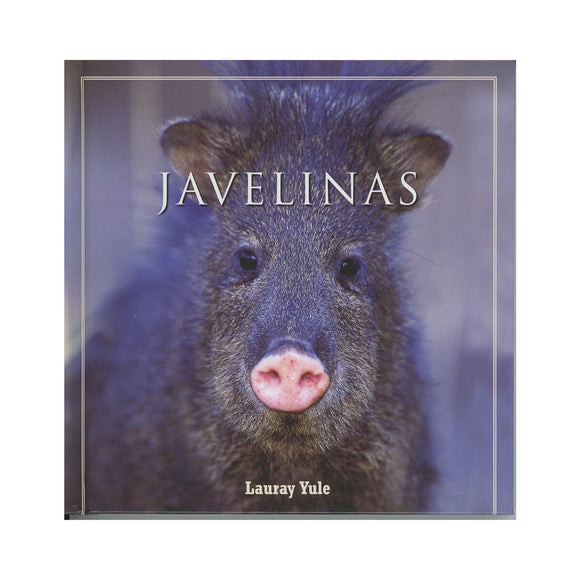 Javelinas  By Lauray Yule