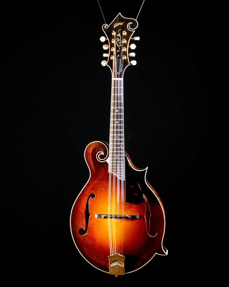 Collings MF5 #240